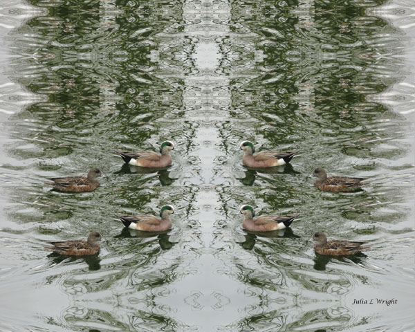 Ducks on Marbled Water