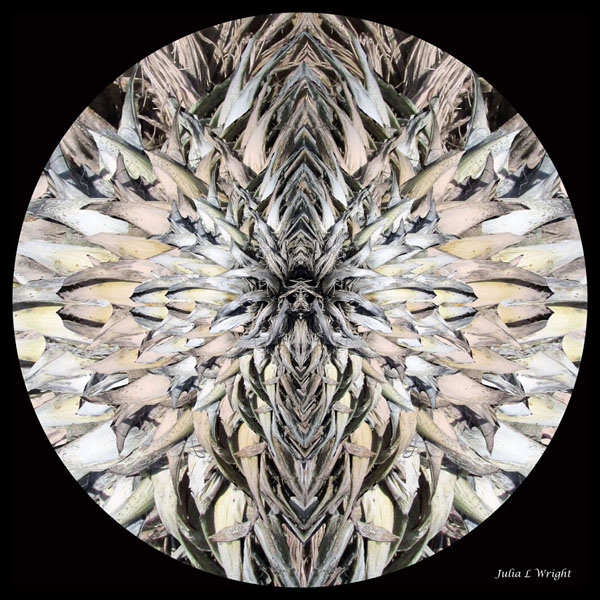 Praying Face Kaleidoscope Image