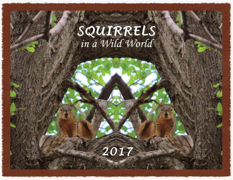 Cover 2017 Squirrel Calendar